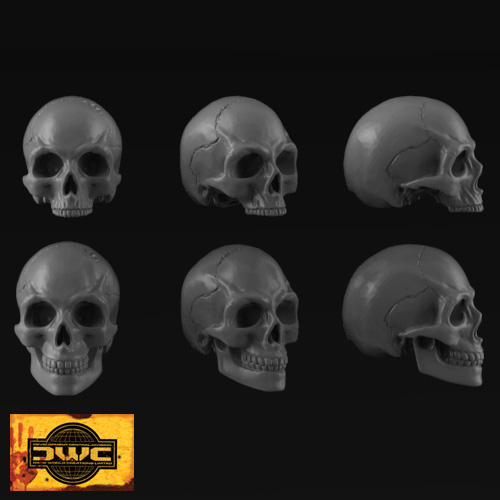 70mm Resin Skulls x 6 (Bag of Skulls)
